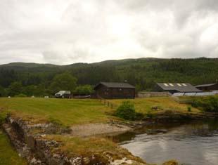 Base Camp - The log cabin